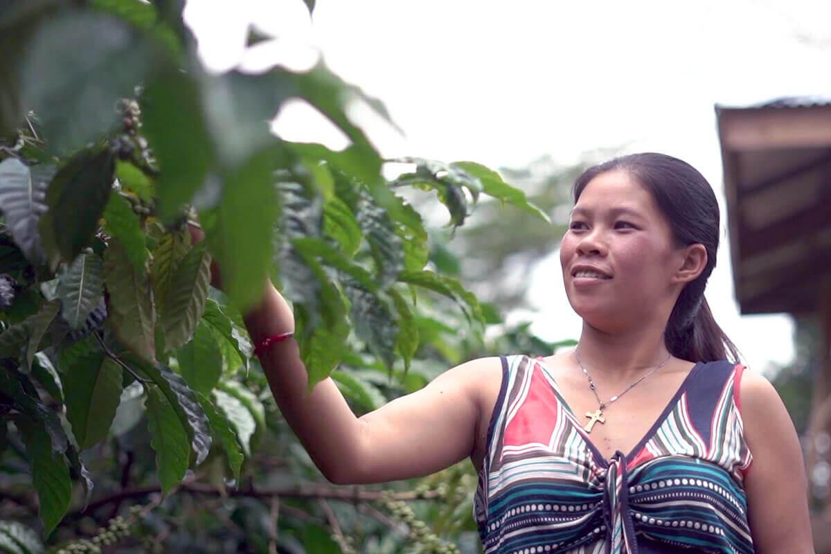organic coffee lady farmer